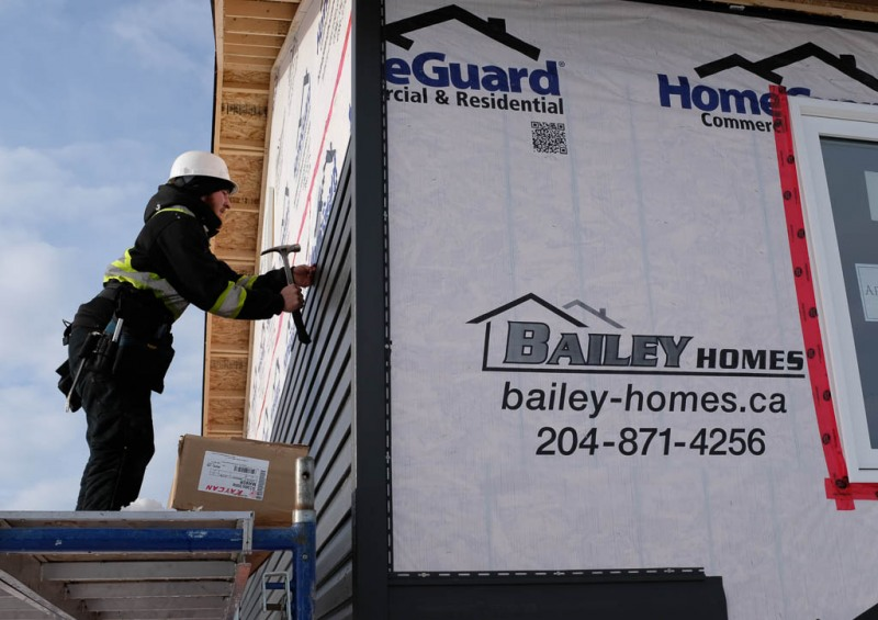 Bailey-190103-2788